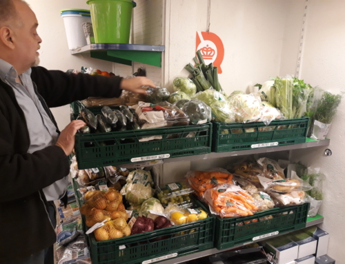 Økologisk grøntboom hos Fejøs Købmand – og i frugthaverne